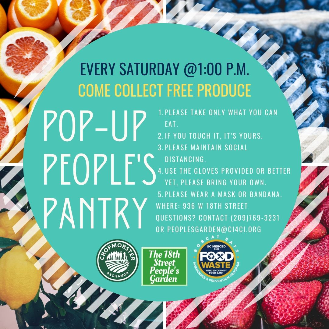 Pop-up People's Pantry Flyer